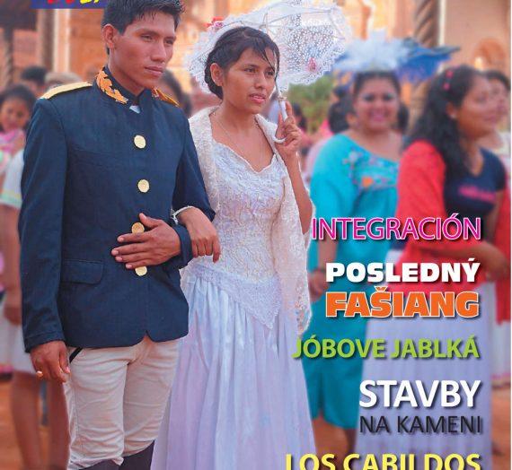 Misie v Bolívii 2/2017
